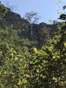 trilha cachoeira do cerradão_Easy-Resize.com
